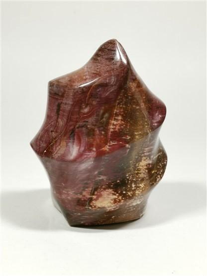 Petrified Wood Flame No1