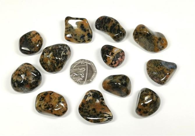 Agate - Cheetah, Tumble Stone