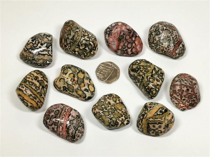 Rhyolite - Leopardskin, Tumble Stone