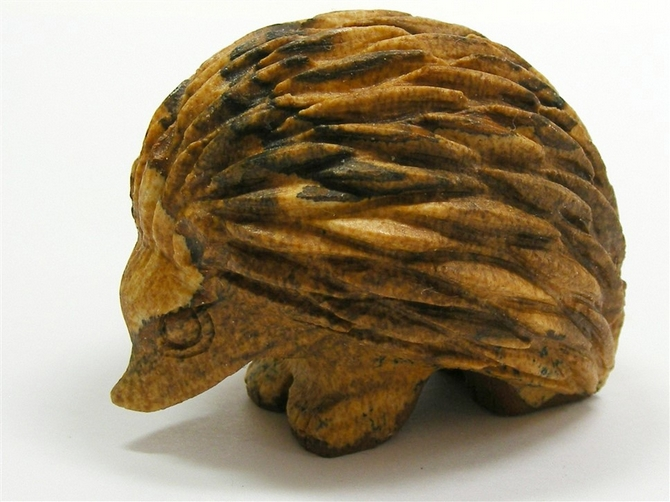Picture Jasper Hedgehog No1