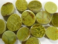Madagascar Green Opal Emma Eggs